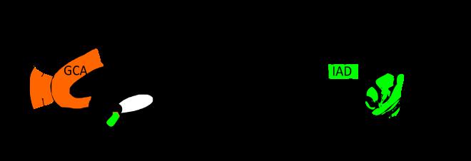 CPF : Cortex Préfontal Médian ; GCA : Gyrus Cingulaire Antérieur ; A : Amygdale ; IAD : Insula antérieure droite PTSD intrusif : CPF et GCA (régulation des émotions) sont en sous-activité ; A (formation de la peur) et IAD (conscience intéroceptive) en sur-activité PTSD dissociatif : CPF et GCA en sur-activité ; A et IAD en sous-activité