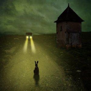 Comme les lapins pris dans les phares d'une voiture, les êtres humains peuvent se retrouver sidérés par la peur. Mais cette réaction n'est pas efficace pour échapper à un agresseur… ou à une voiture.
